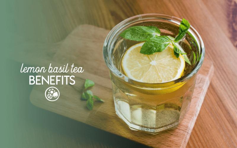 Benefits of lemon basil tea